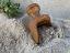 wooden scoop2