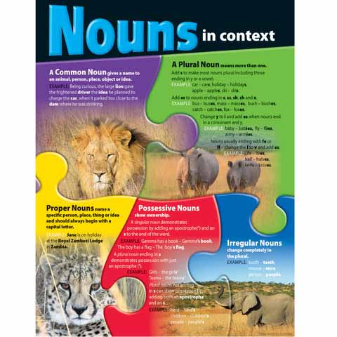 Nouns in Context Chart