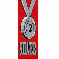 Silver 2 Vinyl Medal Ribbon