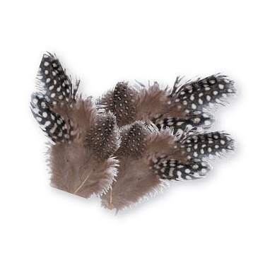 Guinea Fowl Feathers Natural