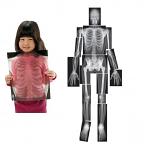 X-Ray Human Body