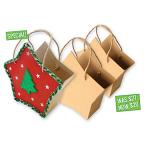 Paper Mache Star Bag