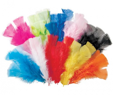 Feathers 60grams Assorted