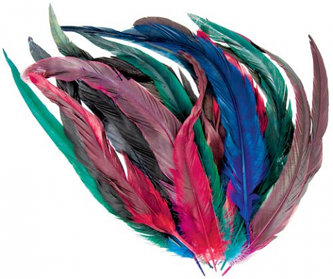 Cocktail Feathers 18's Assorted