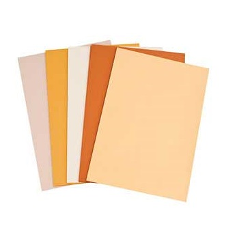 Cover Paper A3 125gsm Skin tones - Pack of 250sheets